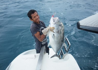 Catamaran Thailand - Jig - Fishing
